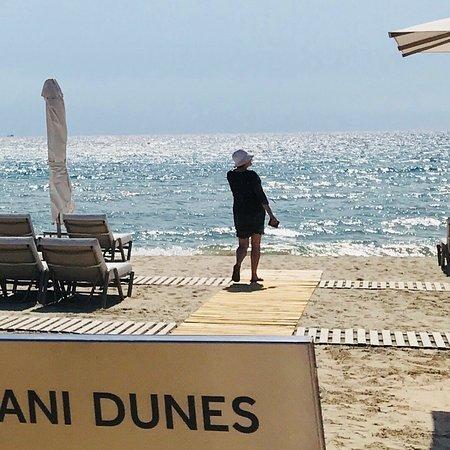 Sani Dunes Φωτογραφία