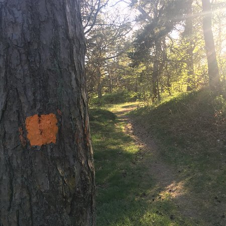 Ystad, Sweden: Skåneleden SL 4 / Österlenleden