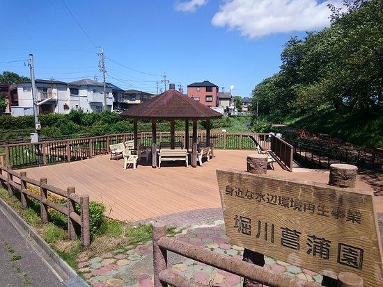 Horikawa Japanese Iris Garden