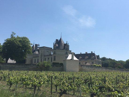 Breze, Francia: Château de Brézé