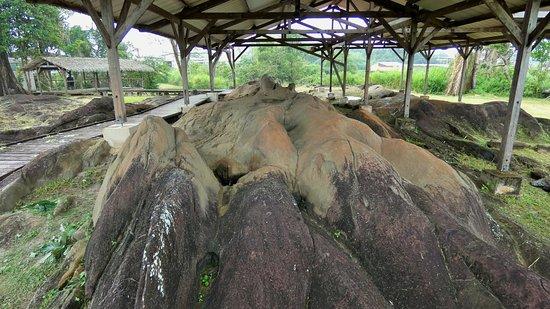 Centre d'Archéologie Amérindienne de Kourou: Roches gravées de la Carapa : vue générale