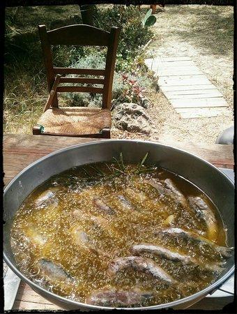 Daratsos, Grecia: Creto-Venetian recipe. Sardines ala savoro.