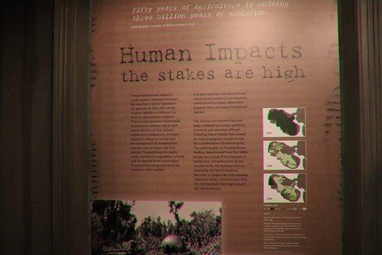 Western Australian Museum - Albany: Human impacts