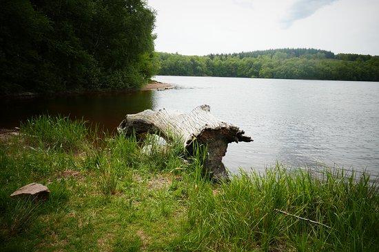Bussieres, França: Le Lac de Saint-Agnan, einfach traumhaft