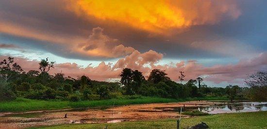Boca Tapada, Коста-Рика: IMG-20180517-WA0023_large.jpg