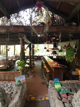 El Castillo, Costa Rica: The best living school I could have ever imagine