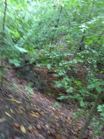 East Palisades Trail