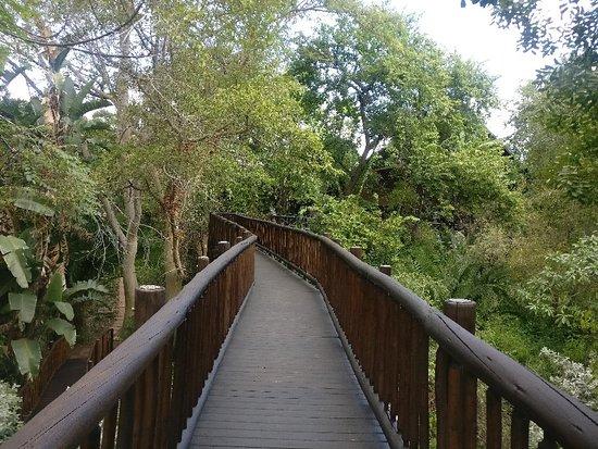 Skukuza, South Africa: IMG_20180517_133146_large.jpg