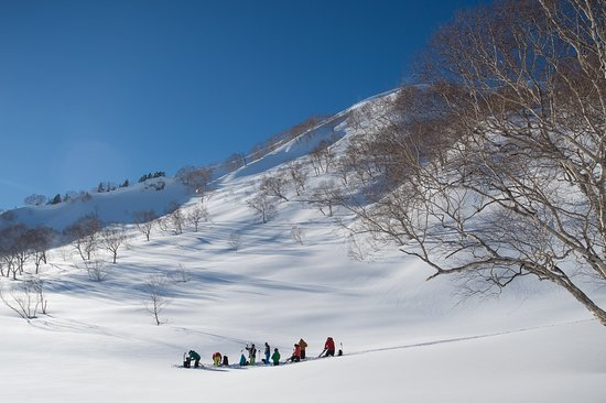 Canadian Rockies Mountain Guides: Ski Touring in Hakuba, Japan.  January 2016.  Photo: Alain Sleigher
