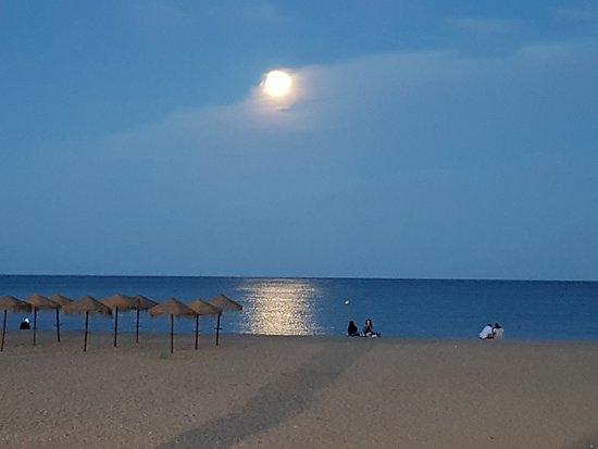 Puerto de Malaga: Beach at the end of the quay