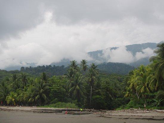 Ballena, Costa Rica: Wonderful!
