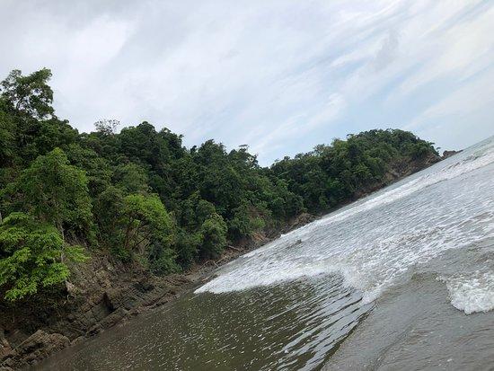 Ballena, Costa Rica: Nature at its best!