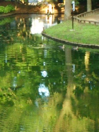 Fujisaki Shinrin Park Resmi