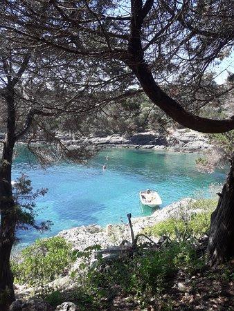 Giannutri Island, Italia: 20180519_111333_large.jpg
