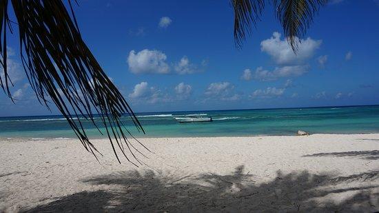 Isla Saona, جمهورية الدومينيكان: Plaża przed hotelem