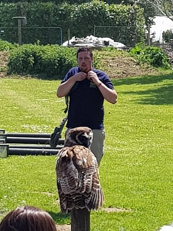 Millets Farm Falconry Centre Φωτογραφία