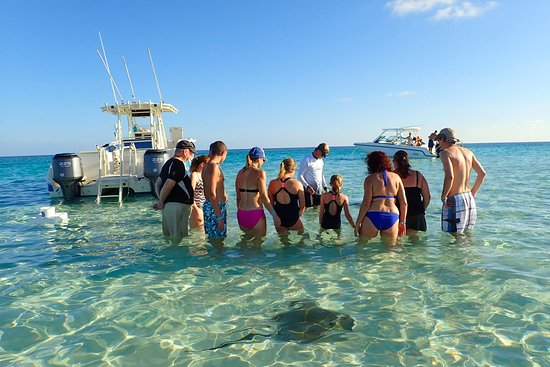 East End, Grand Cayman: Beautiful day with the Cayman Stingrays