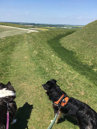 Broad Hinton, UK: The hill fort