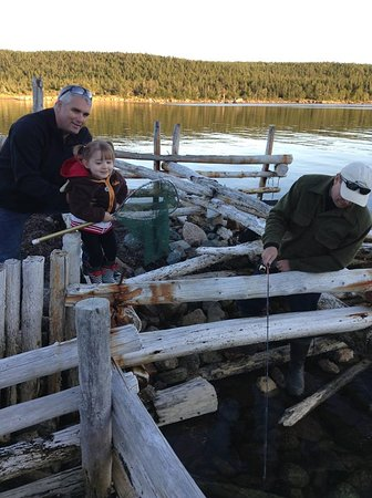 Hare Bay, Kanada: Fishing for Connors