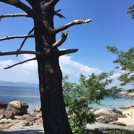 Playa Area das Pipas照片
