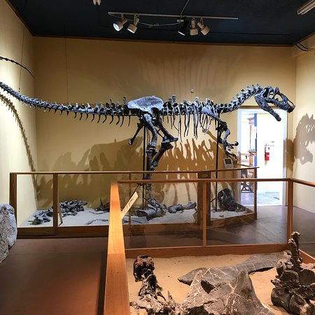 Glenrock Paleon Museum