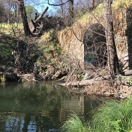 Mariposa Swimming Hole