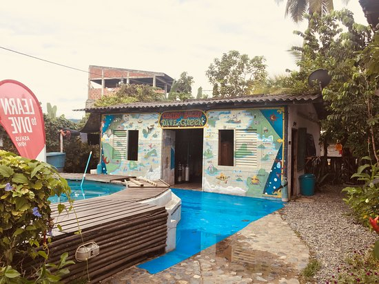 Dive and Green: Dive center with all equipment and training pool