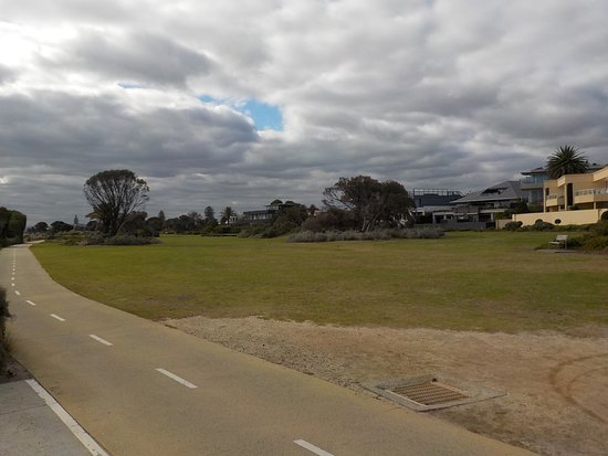 North Road Reserve: At the Southern end of the Reserve, looking North