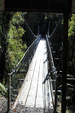 Hokitika Gorge Walk: Swing Bridge