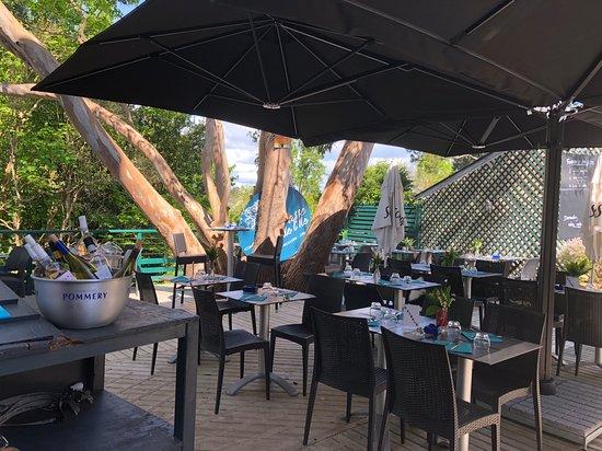 Terrasse à l ombre d un eucalyptus - Photo de La Terrasse de l\'île ...