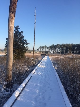 Bethany Beach Nature Center: Boardwalk out to marsh