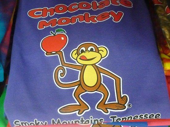Chocolate Monkey照片