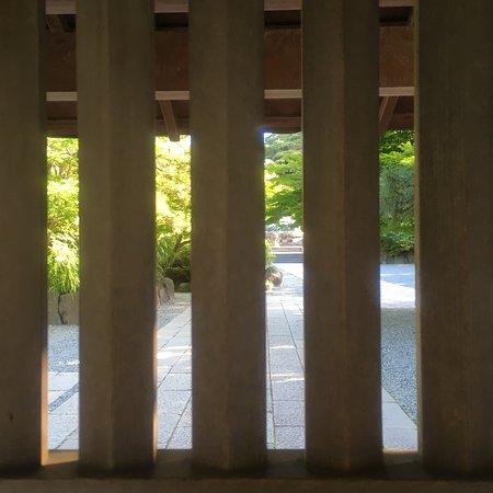 Kotoku-in (Great Buddha of Kamakura): photo3.jpg