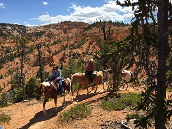 Ruby's Horseback Adventures: Losee and Casto Canyon all day ride.