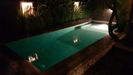 Nyuh Bali Villas: Pool at night