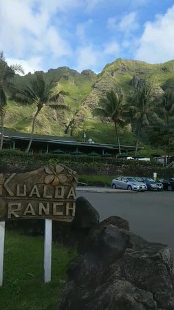 Kaneohe, ฮาวาย: Screenshot_20180506-153356_large.jpg