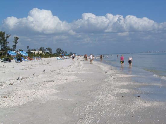 Sanibel Siesta on the Beach: Other