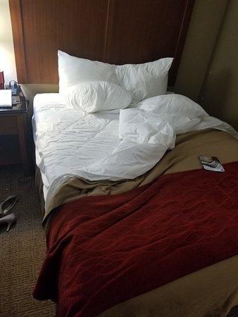 Comfort Inn & Suites Airport - American Way Photo