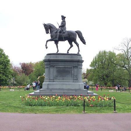 Boston Public Garden: photo1.jpg