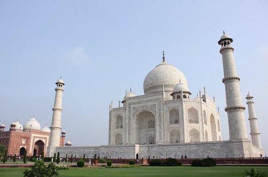 Excursão Privada do Dia do Taj Mahal...