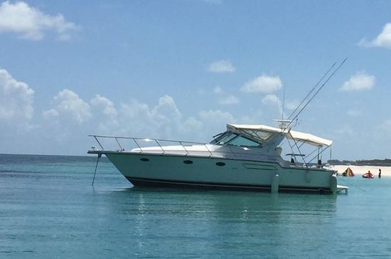 Private Half-Day Fishing Charter in...