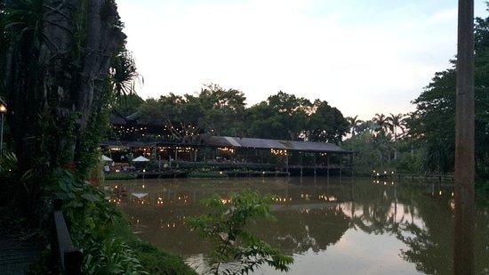 Sepilok, Malaysia: 20180501_180952_large.jpg