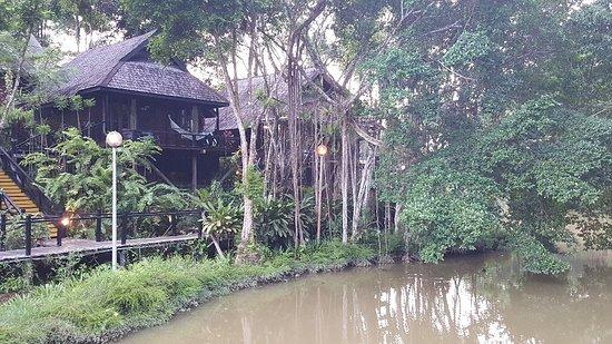 Sepilok, Malaysia: 20180501_180829_large.jpg
