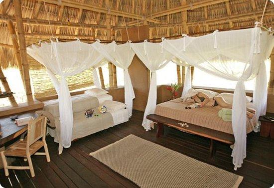 Playa Viva: Guest room