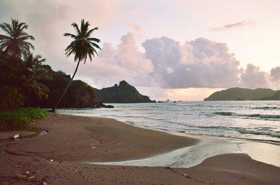 Speyside, Tobago: Beach