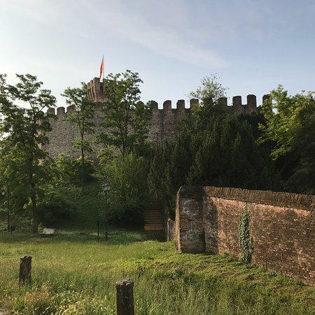 """Villa Contarini, detta """"Vigna Contarena"""""""