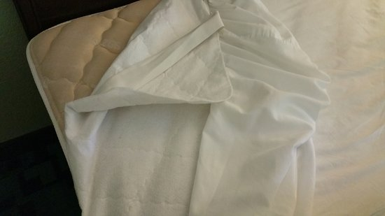 Creswell, Oregón: Sheets, paper thin mattress pad, extra hard mattress