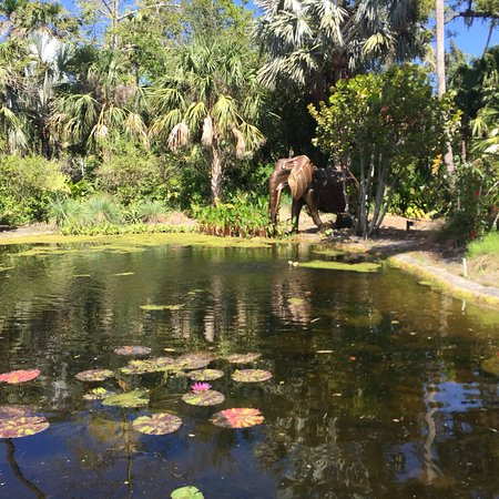 McKee Botanical Garden: photo1.jpg