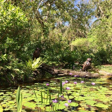 McKee Botanical Garden: photo2.jpg
