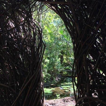 McKee Botanical Garden: photo3.jpg